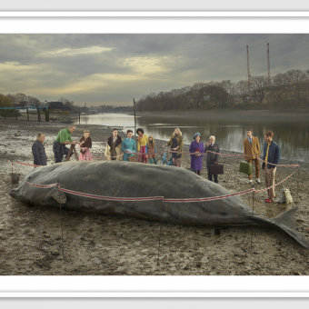 The Thames Whale